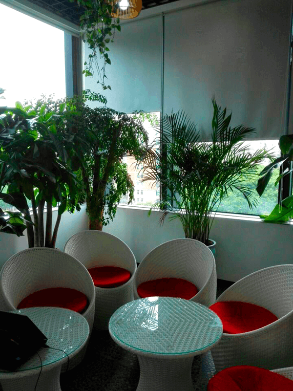 UTEC_China_NEW_office7